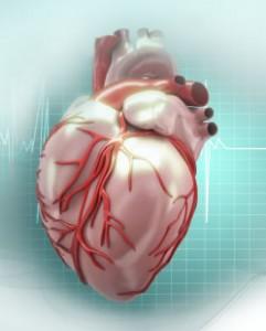 mencegah jantung koroner